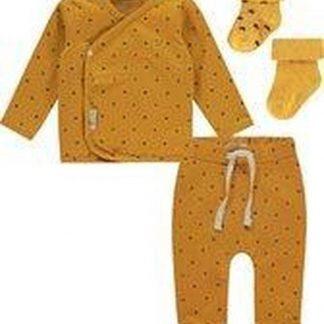 Noppies Unisex Set(4delig) Broek, Shirt en sokjes Geel Honey Yellow 62