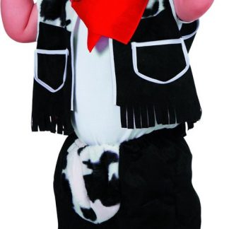 Carnavalskleding Cowboy jongen Texas Maat 80