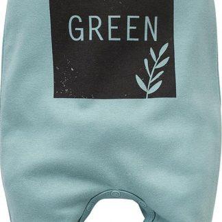 Pinokio - Babykleding - Boxpakje - Stay green - Maat 62 - Blauw